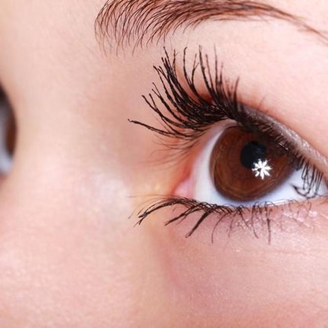 La forma de cejas más apropiada para cada tipo de rostro