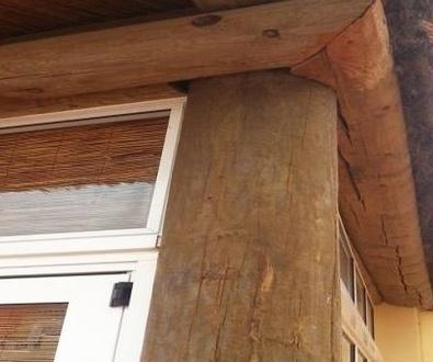 Patologías de la madera exterior