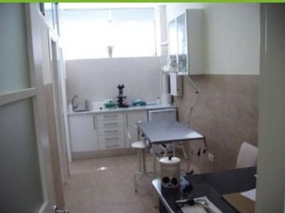 Todos los productos y servicios de Veterinarios: Centro Veterinario La Tortuga