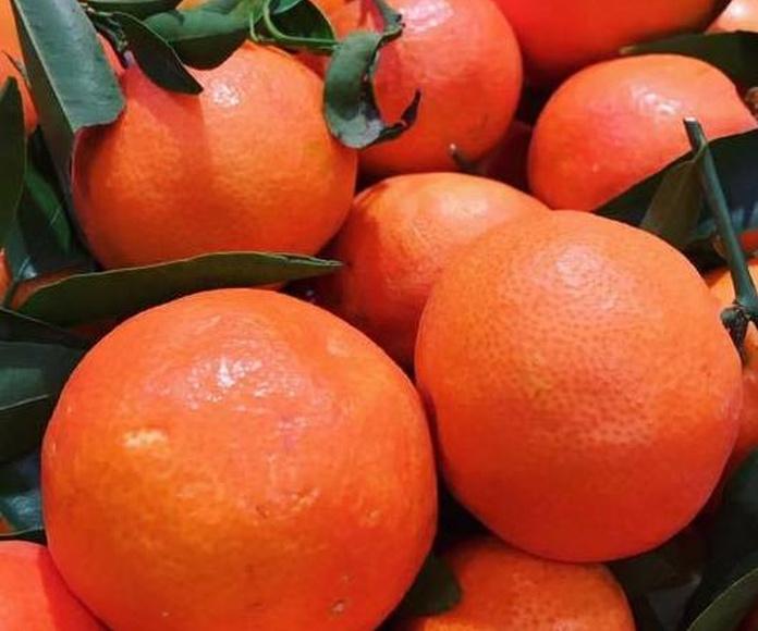 Frutería: Productos de Delicias L ´ Avinguda