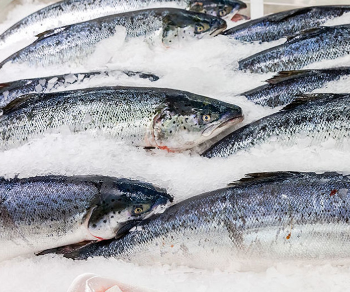 Importación: Servicios de Pescados A Cigurria