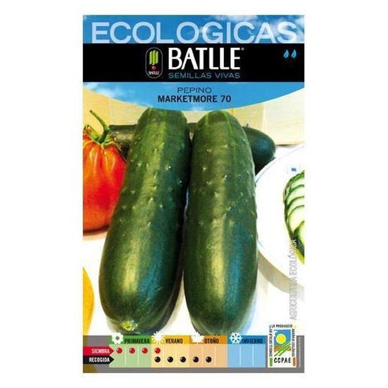 Semillas ecológicas de Pepino marketmore 70  Ref. 10