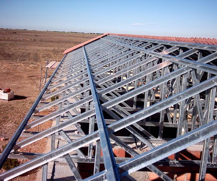 Fabricación y montaje de estructuras metálicas : Servicios del Taller de Talleres Franco Cobos