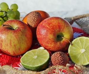 Transporte de frutas