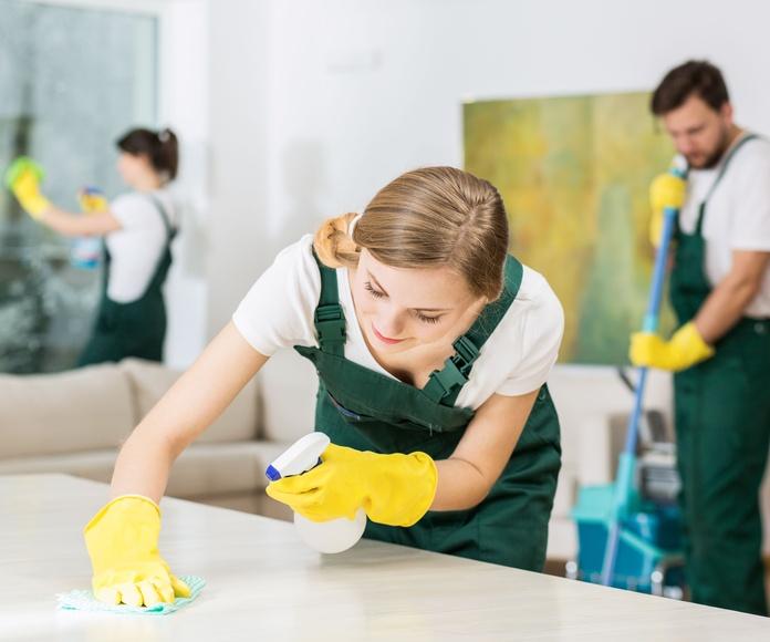 Limpiezas fin de obra: Servicios de Nevada Idema Grupo