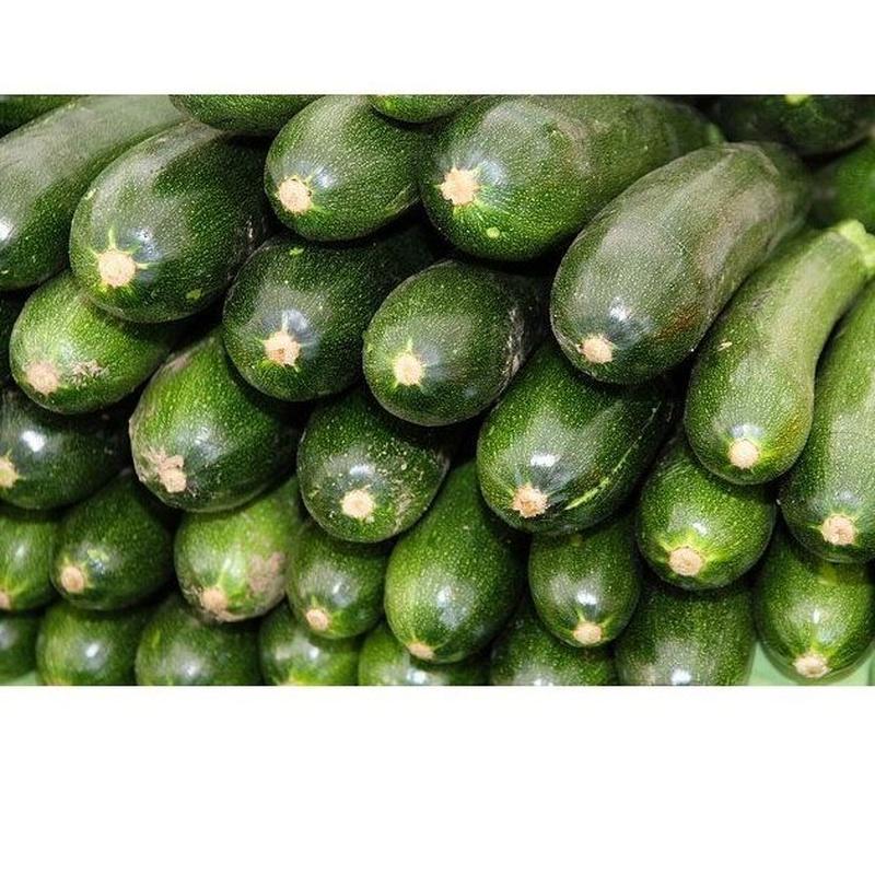 Calabacín: Productos de Mundifruit