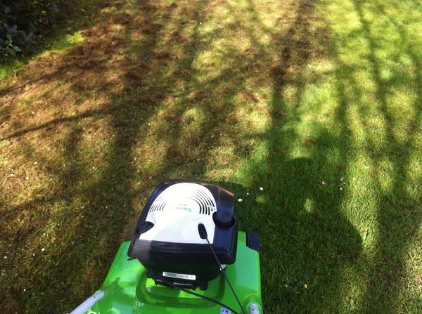 Empresas de jardinería en Comillas y mantenimiento de espacios verde