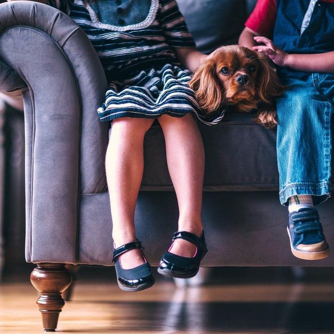 El sofá en casa con niños pequeños