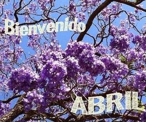 Ofertas abril Belleza+Estética Tacoronte