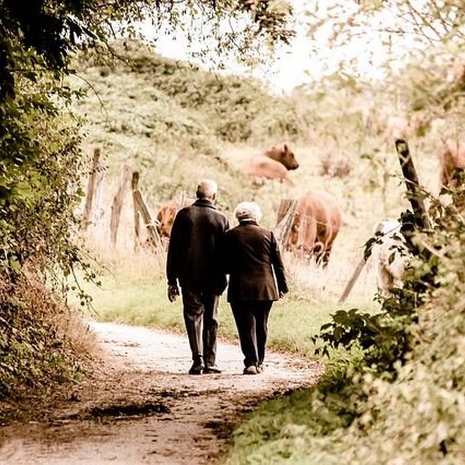 Beneficios del yoga para ancianos