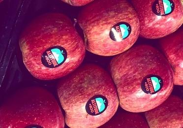 Manzanas de Altitud