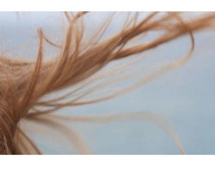 Peinados y cortes de pelo: Servicios de M. A. Estilistas