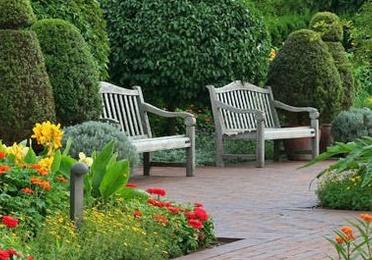 Ejecución de proyectos de jardinería