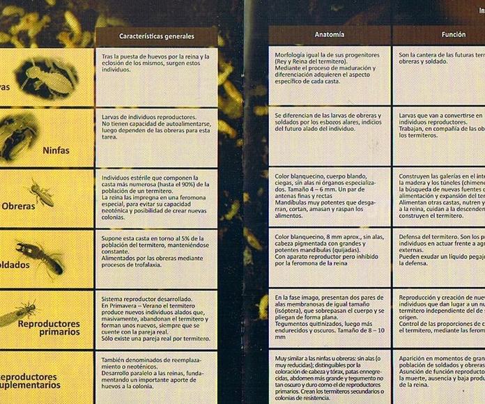 Sistema de Cebos para el Control Definitivo de las Termitas: CATÁLOGO of Biochemical
