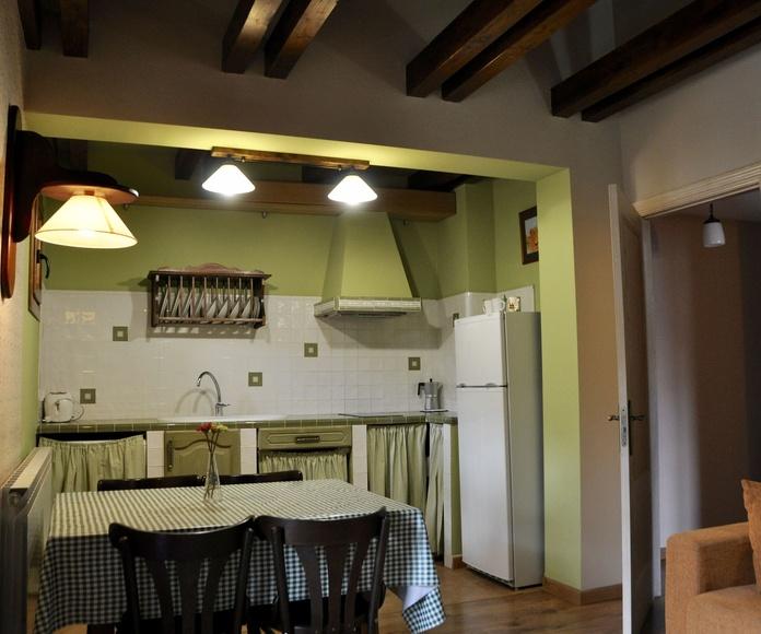 Cocina apartamento Ordesa.