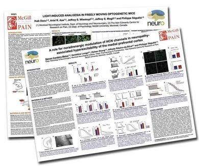 Impresión de posters  cientificos para congresos Barcelona- Copyshow