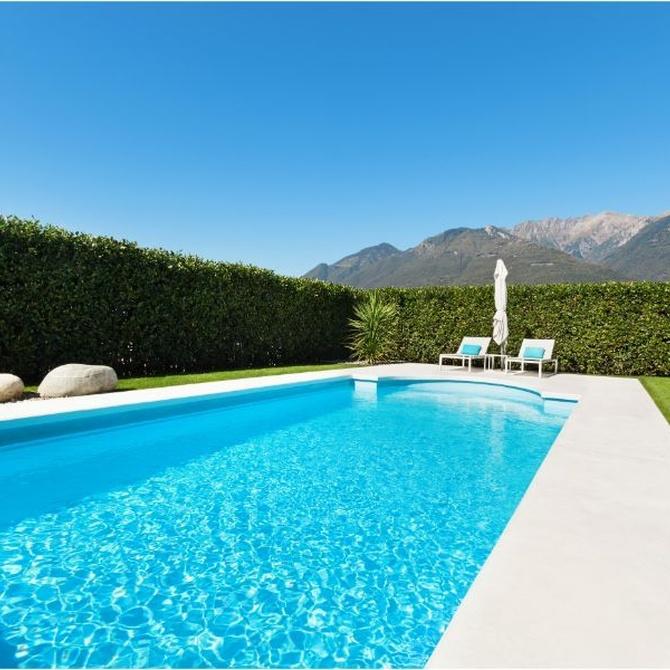 Preparar el terreno para el proyecto de tu piscina