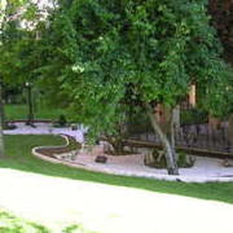 diseño de jardines en Móstoles