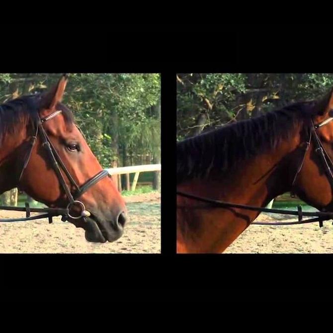 Diferencias entre el Full HD y el 4K