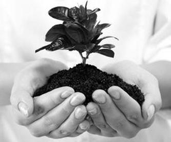 Asesoria contable en Leòn: Servicios profesionales de Bufete & Gestión