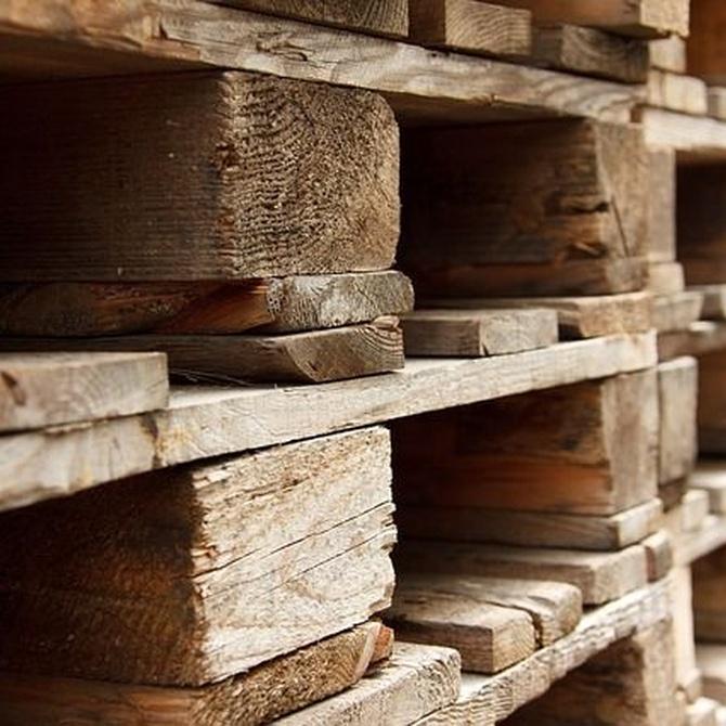 Propiedades y usos de la madera
