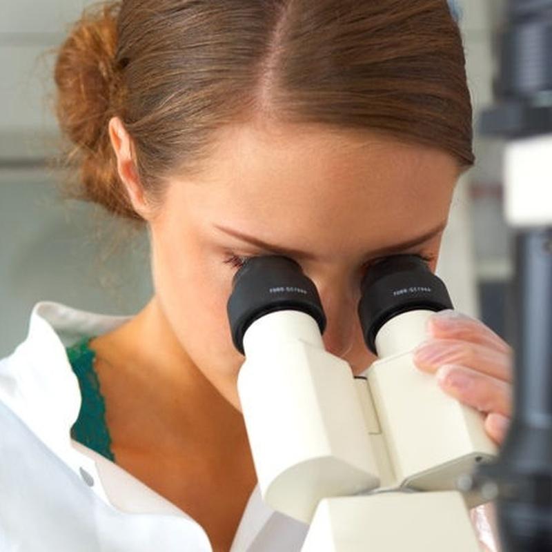 Microbiología: Servicios de Laboratorios Scada, S.A.
