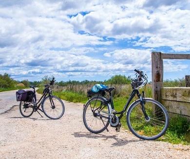 Feliz día de la bicicleta