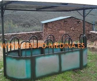 TOLVA DE VACUNO 3000KG: NUESTROS PRODUCTOS de Grupo Medina
