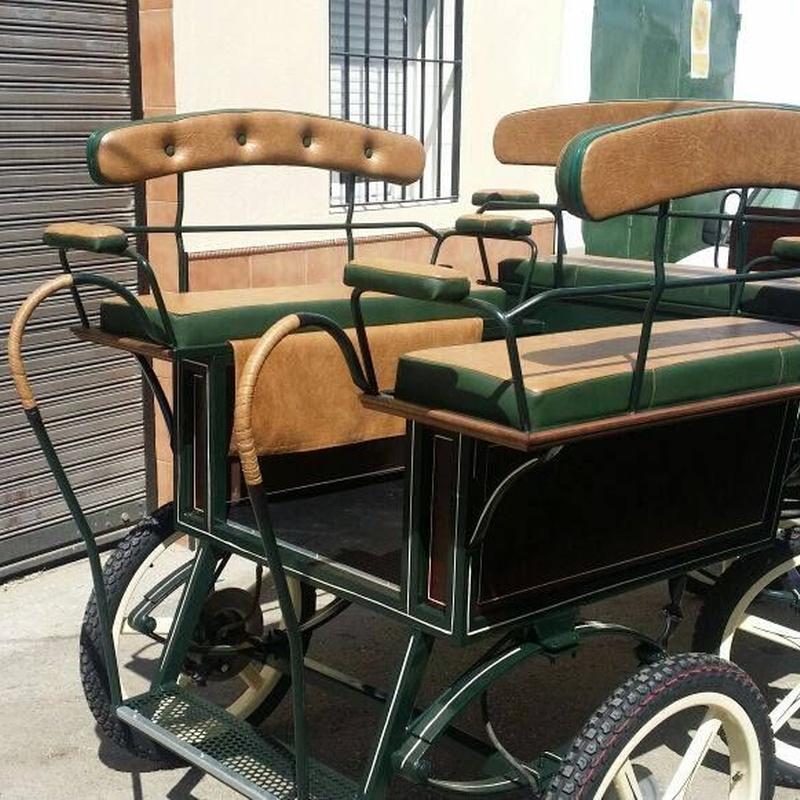 Carruajes: Servicios de Carruajes Lora del Río