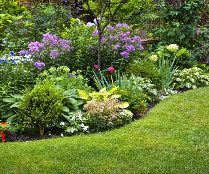 Diseño e instalaciones de estructuras florales: Servicios de Darobe Integral de Mantenimientos, S.L.
