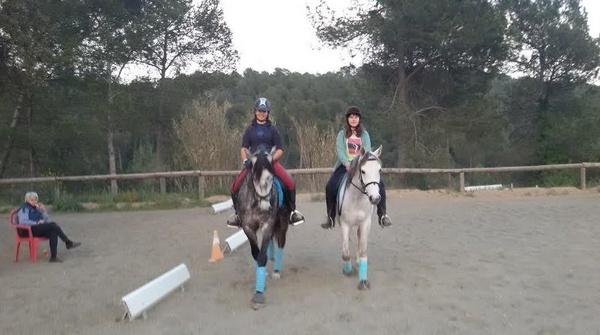 Clases de perfeccionamiento e iniciación para adultos. Con caballos propios!