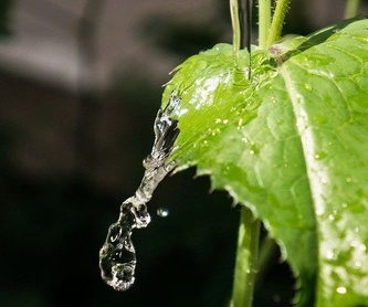 Material de fontanería: Servicios de Grifonsur