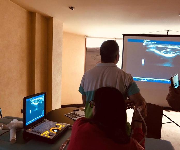Curso avanzado de ecografia musculo - esqueletica