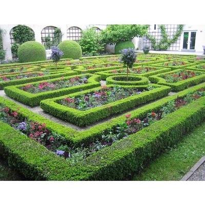 Centro de Jardinería: Garden La Palma