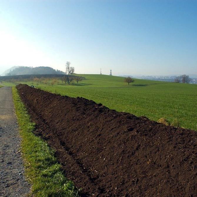 Beneficios de usar compost, un abono orgánico