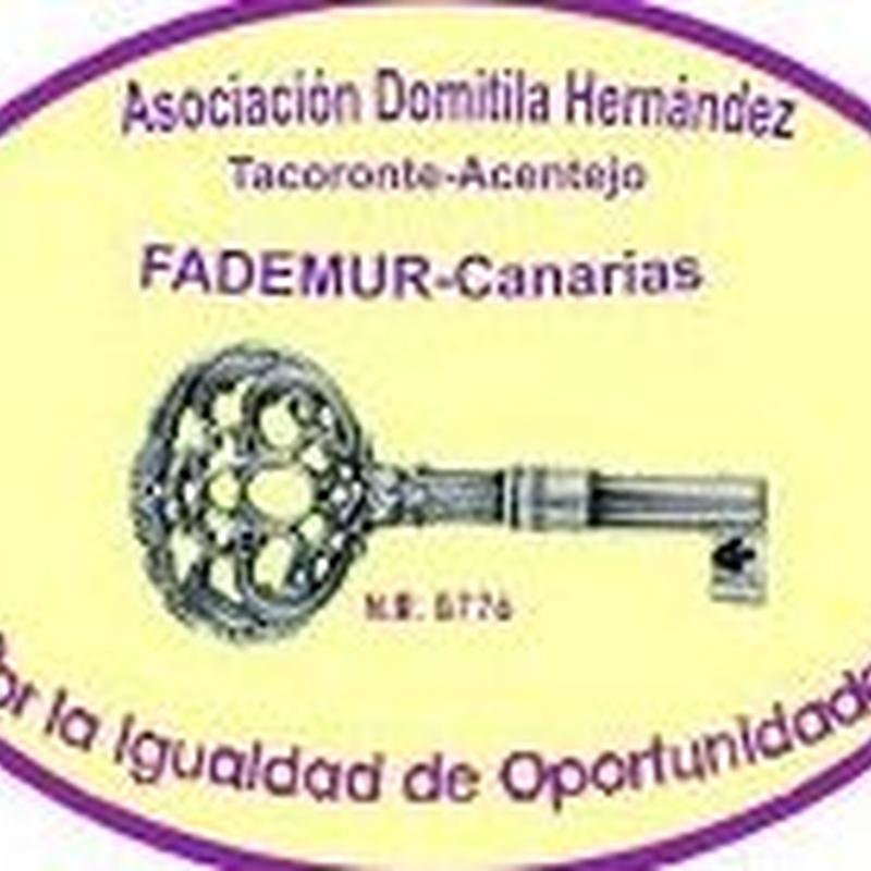 Procesos de inclusión de personas con discapacidad: Proyectos y Servicios de Asociación Domitila