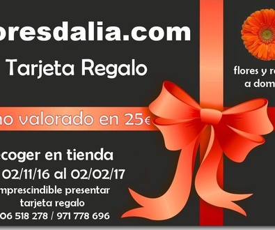 Colaboración de floresdalia.com