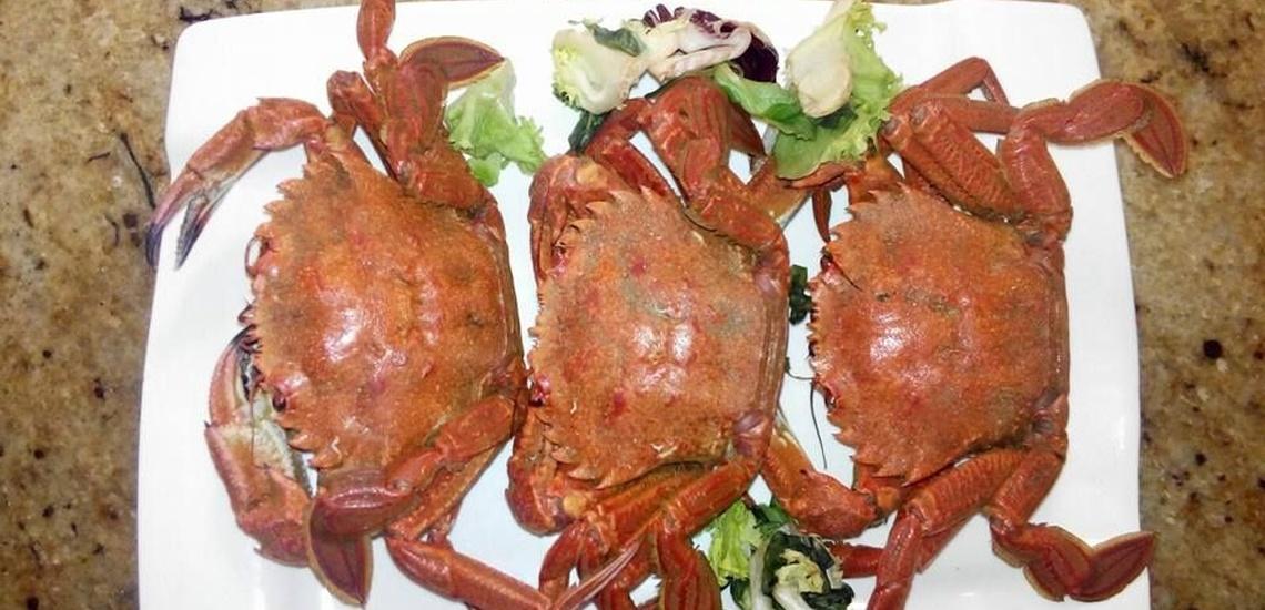 ¿Dónde comer exquisito en Herrera de Duero cocina casera mediterránea?