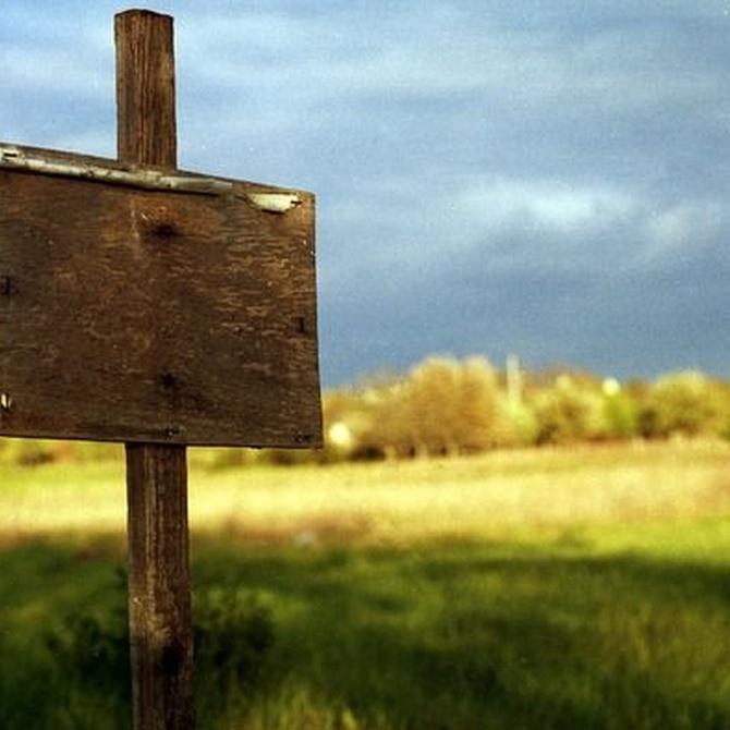 En qué consiste el desbroce de un terreno