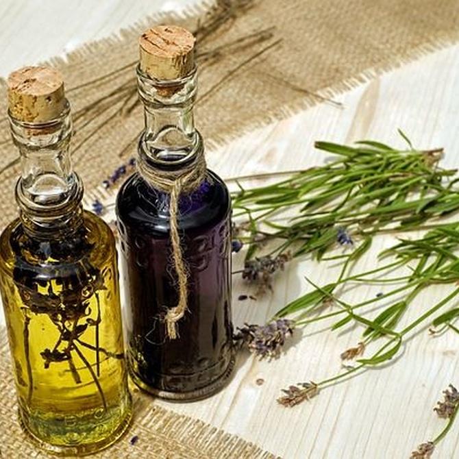 Diferencias entre la naturopatia y la medicina natural