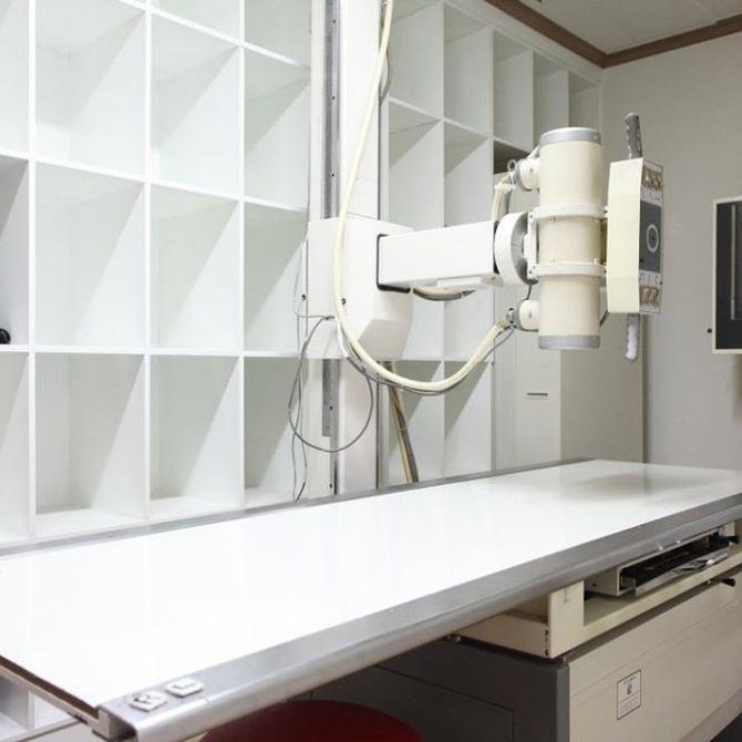 ¿Sabías que se usan los rayos X en la restauración de cuadros?