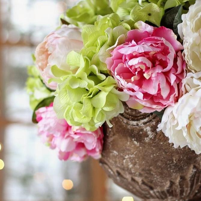 ¿Conoces las esponjas para las flores?