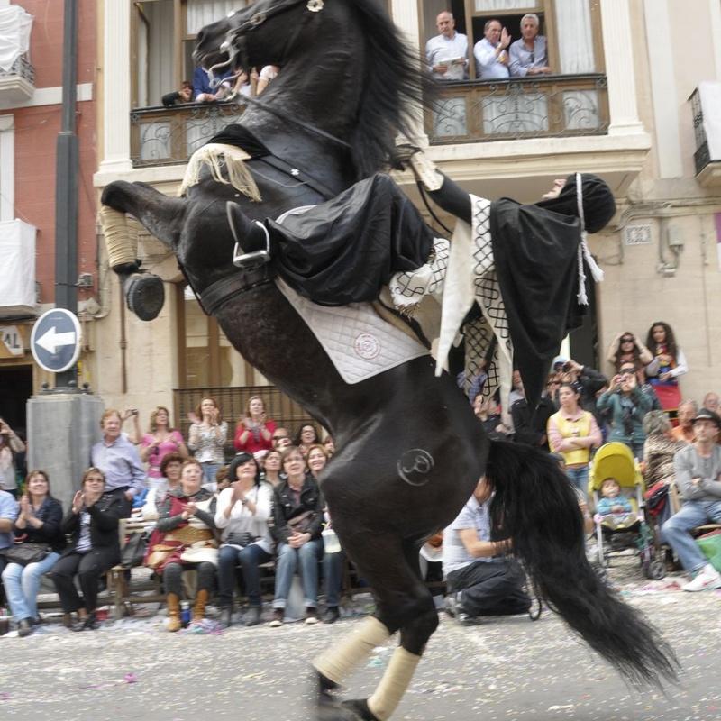 Espectáculos y fiestas: Servicios de Equitación Peluca