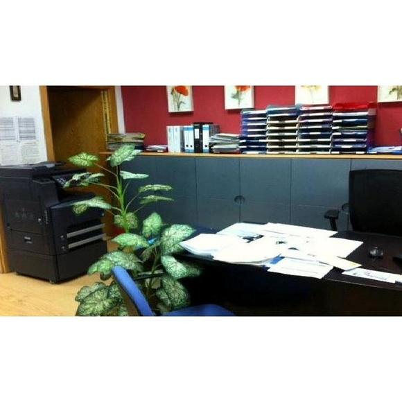 Balances: Servicios de MIRUT Administración de Fincas, C.B.