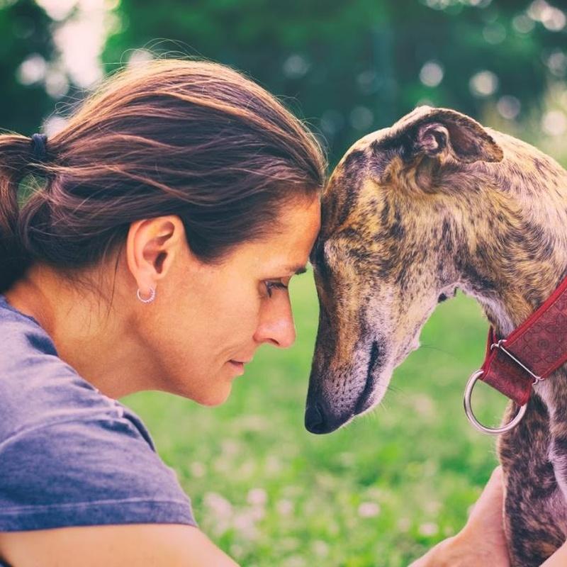 Asesoramiento veterinario integral: Servicios veterinarios de Clínica Veterinaria Dobermann II