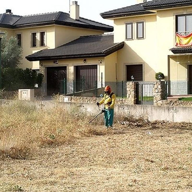 Desbroce y limpieza de parcelas: Jardinería Vicente Salcedo de Jardinería Vicente Salcedo