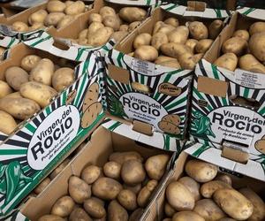 Patatas de Sanlúcar en Aguilar de Campoo