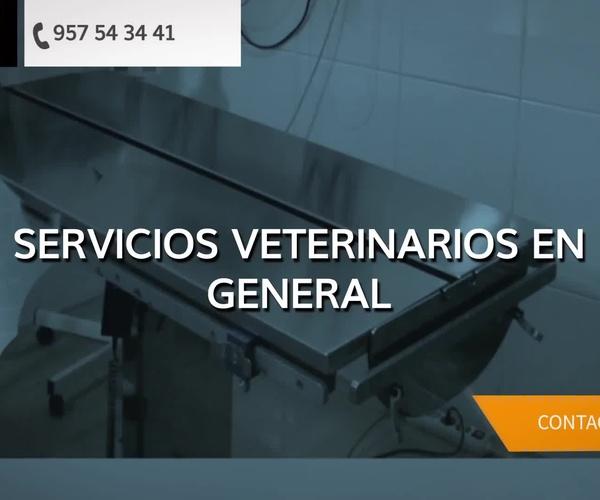 Veterinarios en Priego de Córdoba | Clínica Veterinaria San Marcos