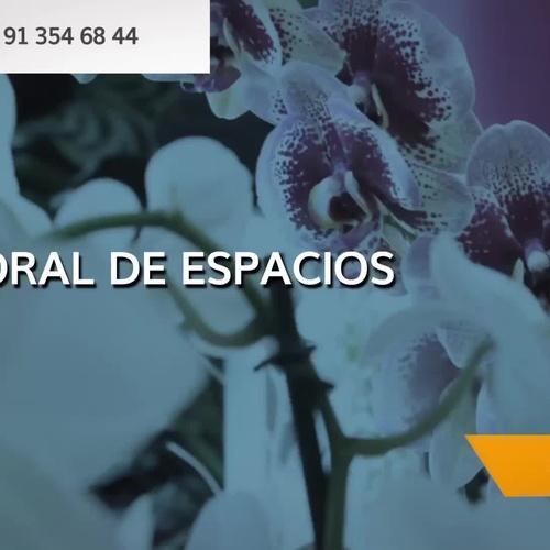 Ramos para novias en Madrid centro | Floristería Pétalos