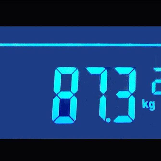 ¿Cómo escojo el sistema de pesaje industrial idóneo?